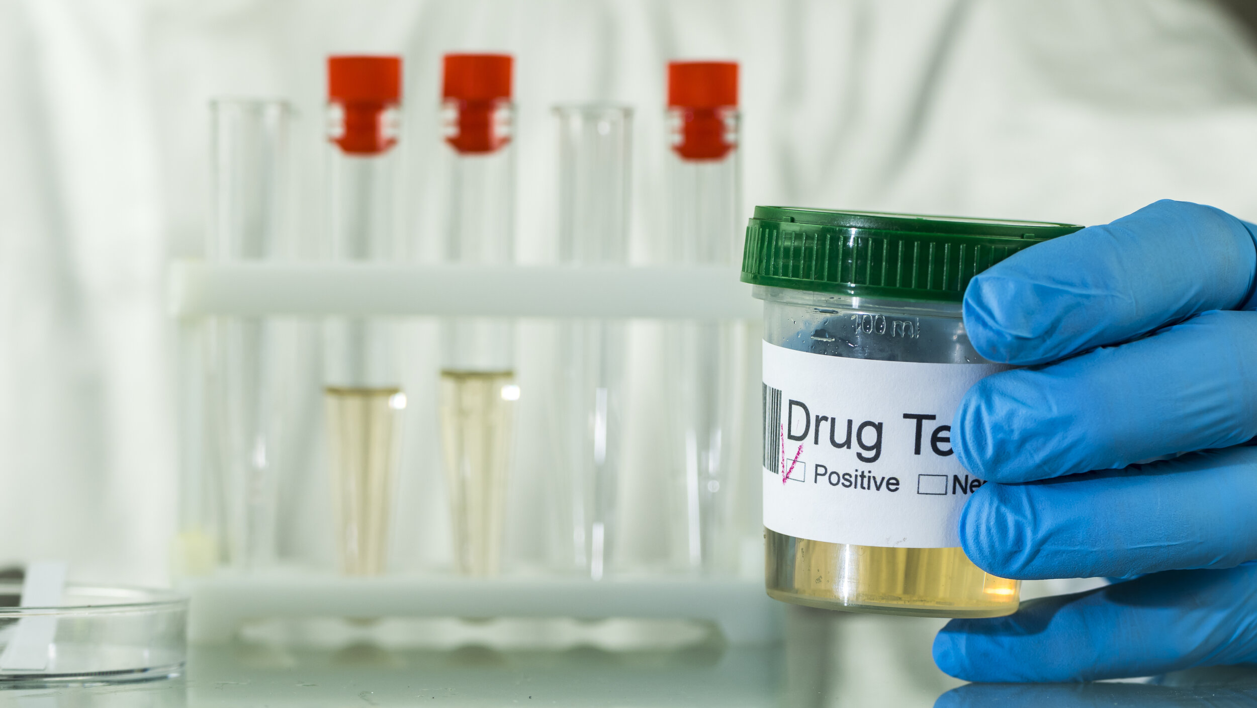 Understanding DOT Drug Testing — Datco Services Corporation