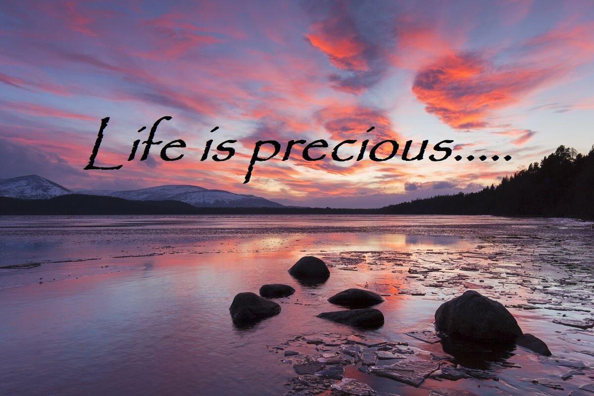 Life is precious.jpg