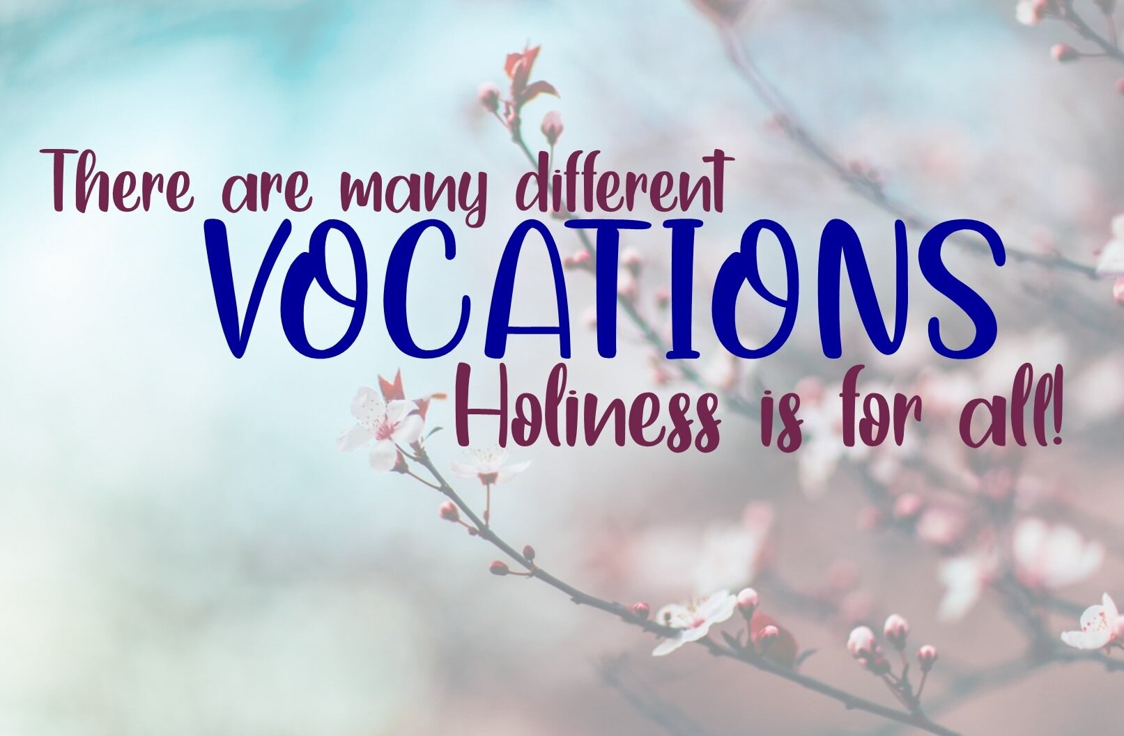 Pope Francis reminds us that holiness is for all!