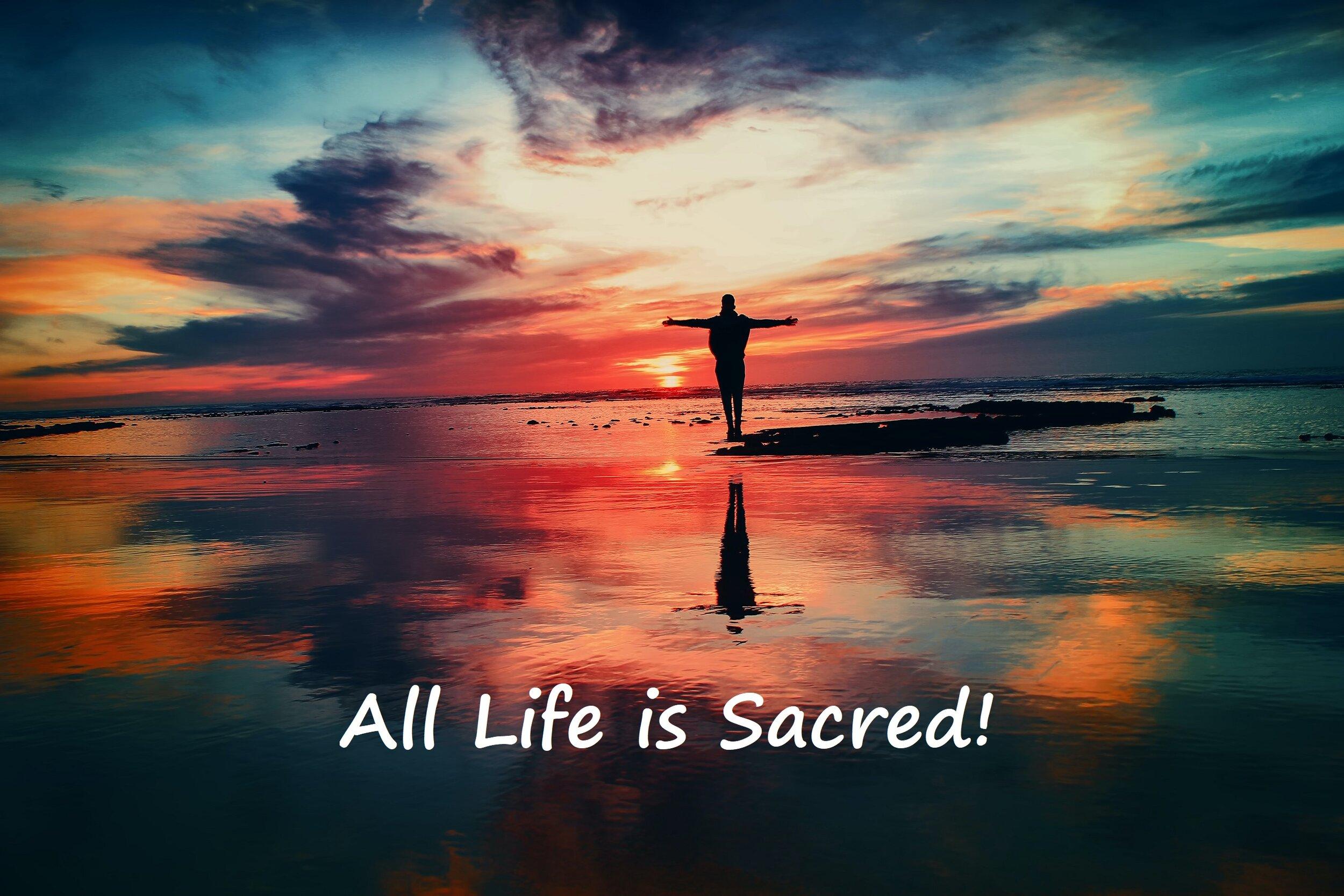 All life is sacred.jpg