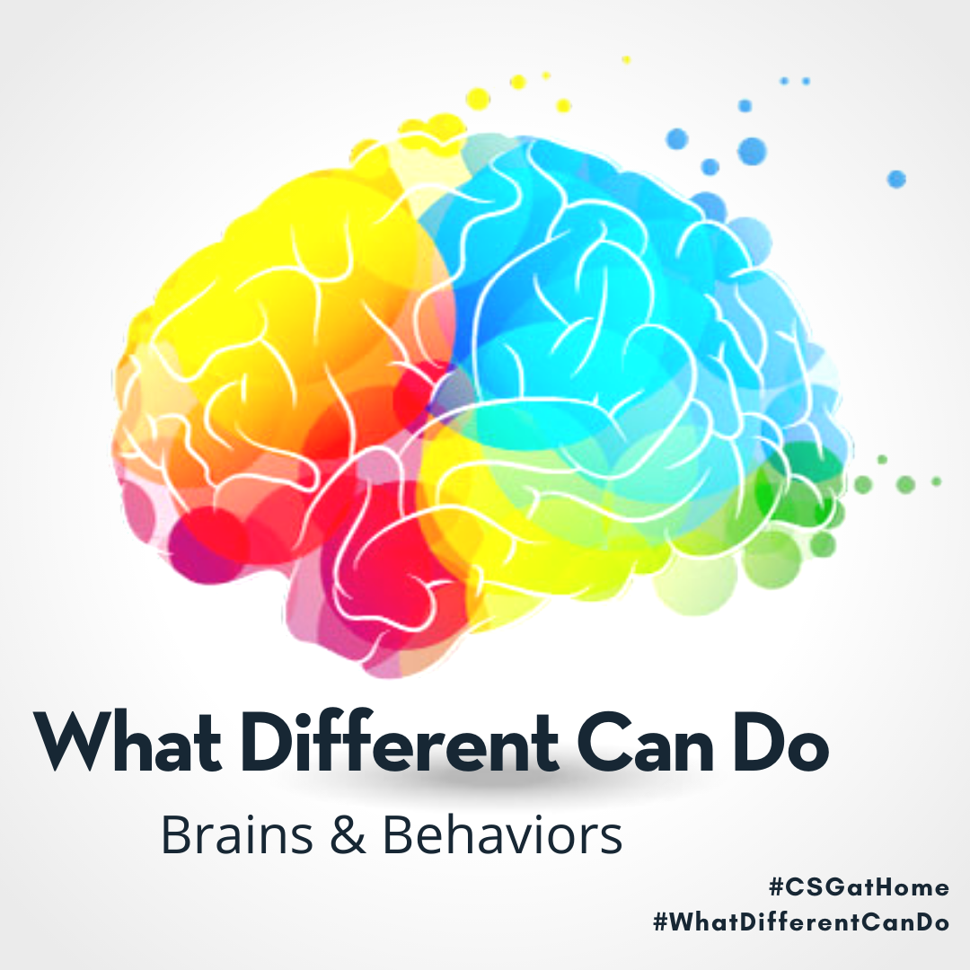 What Different Can Do - Brains and Behaviors