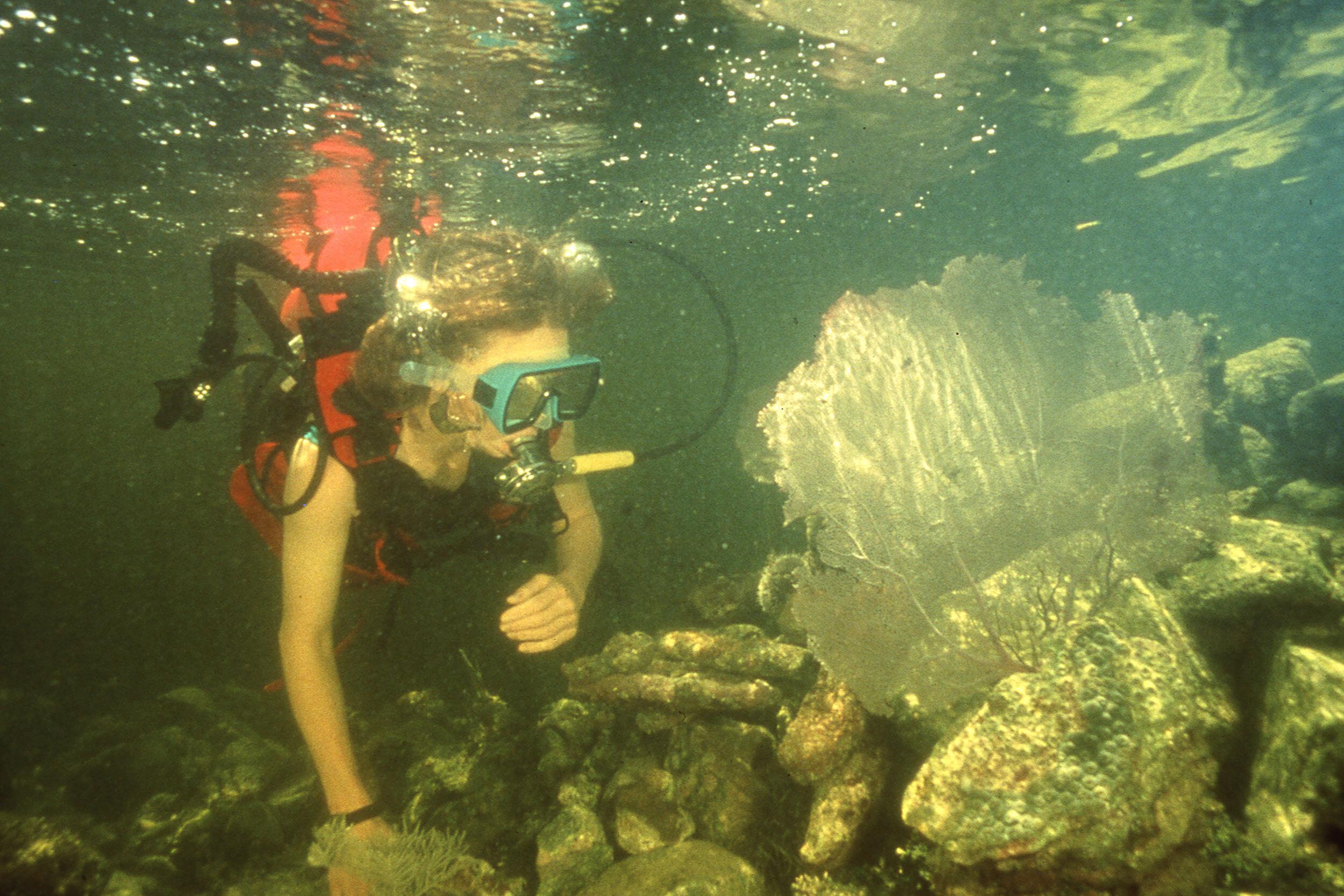 Biosphere inspecting coral reef in the ocean biome