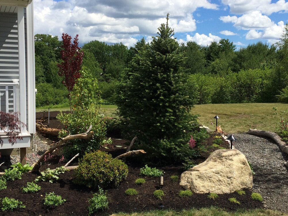 Ecoworks Sustainable Landscape Design Garden Irrigation Services Issaquah Wa