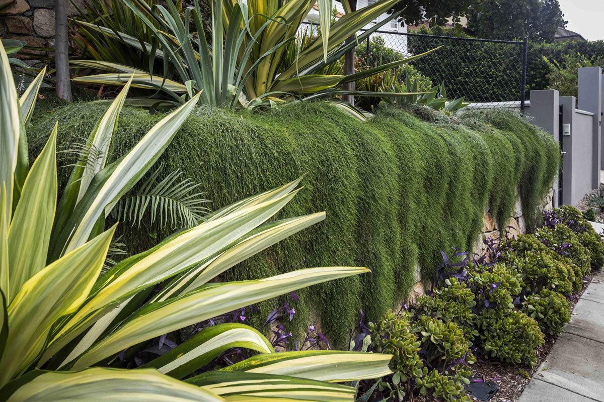 My Verandah Subtropical Gardens Brisbane