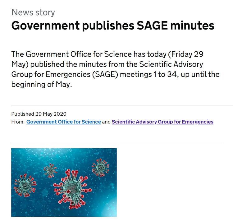 SAGE Minutes Link