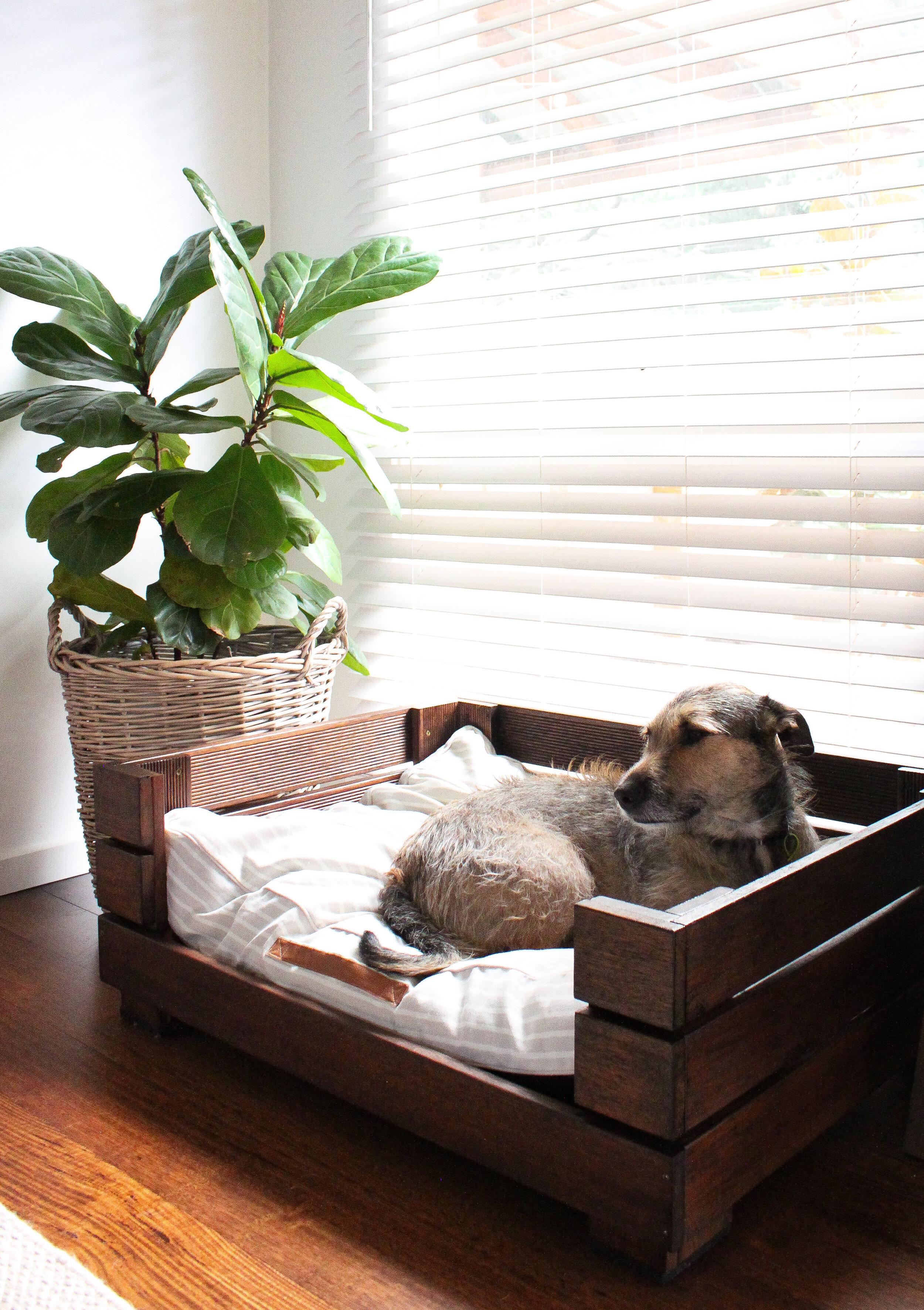Diy Dog Bed Frames January Revival