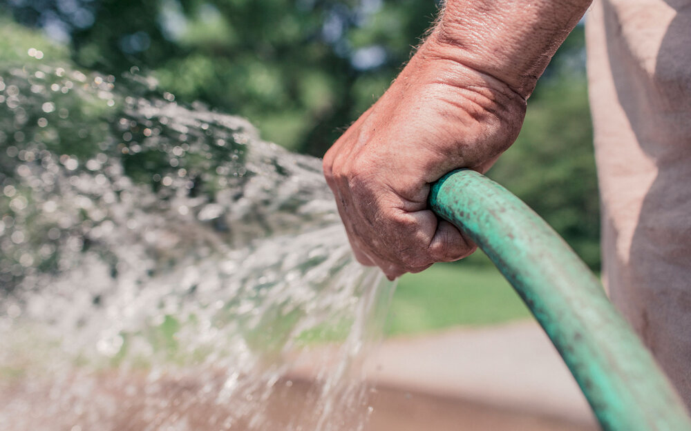 Watering with a hose is one way to do it.    Image source