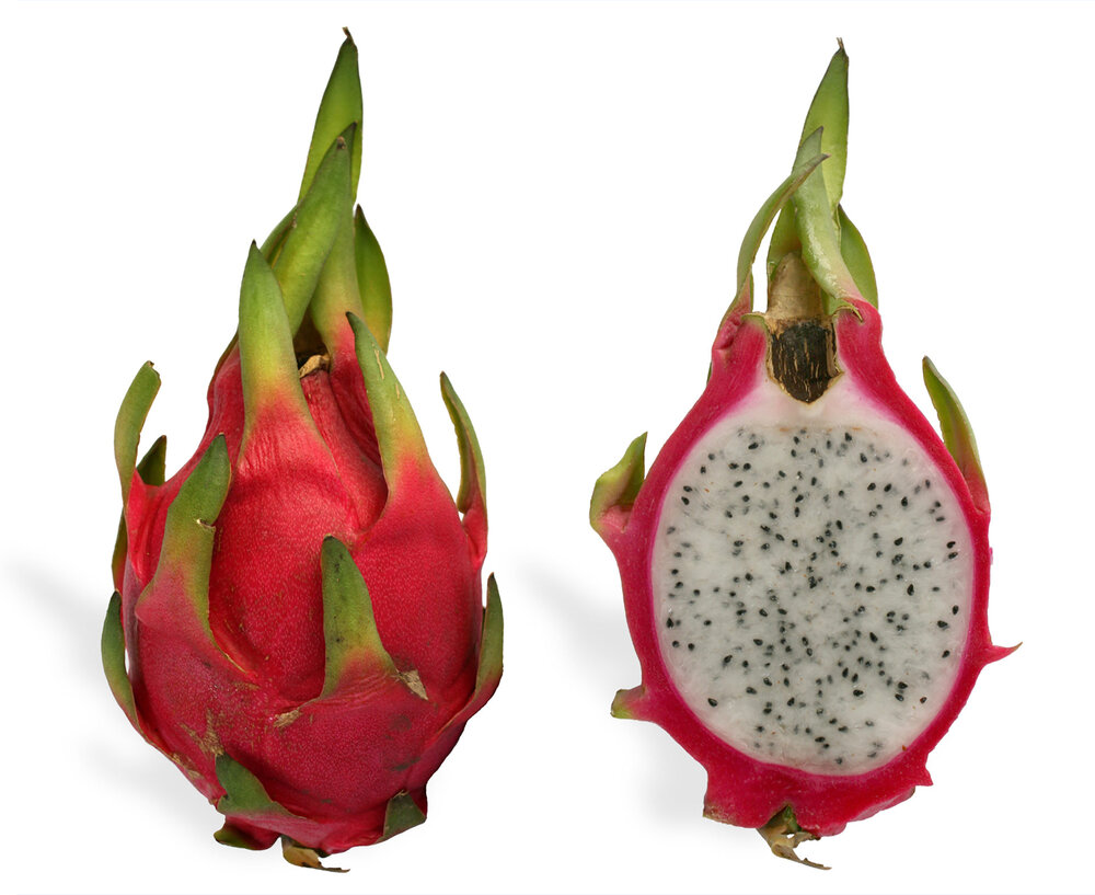 Cross section of a dragon fruit  Hylocereus undatus  showing the bracts around the outside as well as flesh and seeds inside.    Image source