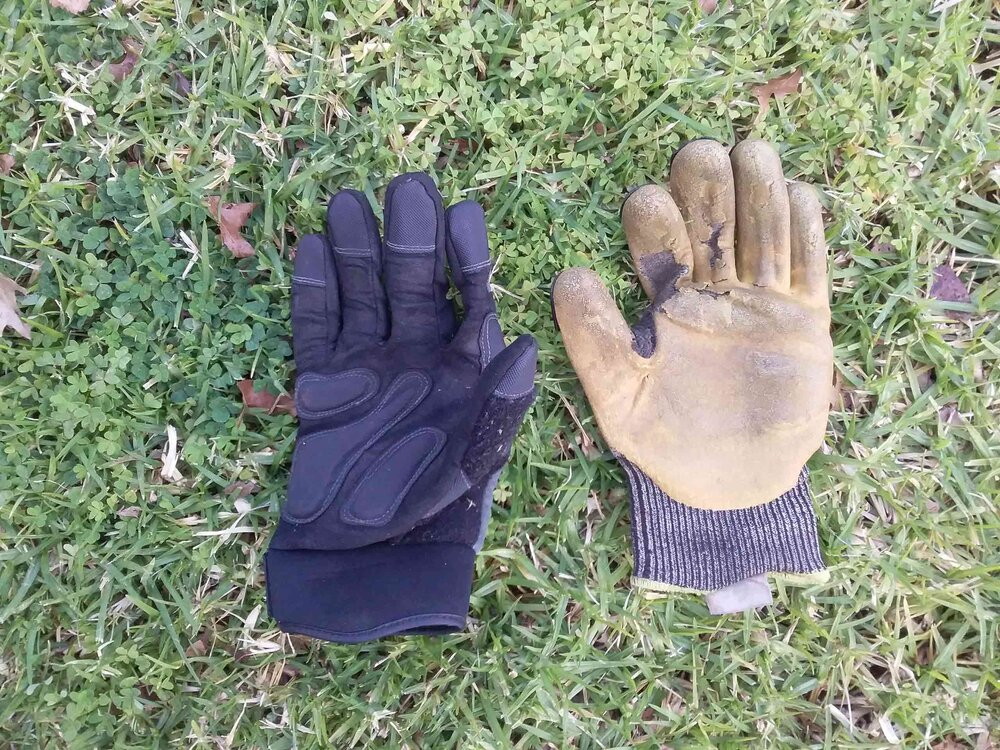 New and old: the yellow Ironclad brand gloves are nearly past their used by date, but my new Protector gloves don't offer as much protection so I still prefer the Ironclad ones. Image via Plants Grow Here