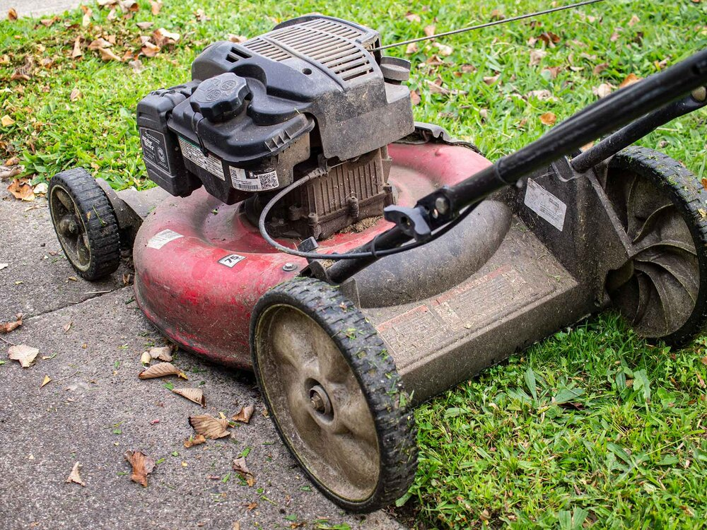 A professional Rover mulching mower with a Briggs & Stratton engine. Image via Plants Grow Here.
