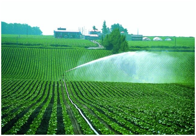 www.azeritravel.az-agricultural-land-in-azerbaijan.jpg