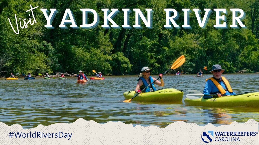 WKC River Day - Yadkin River.jpg