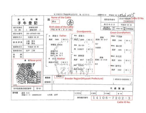 miyazaki-wagyu-beef-cattle-birth-certificate.jpg