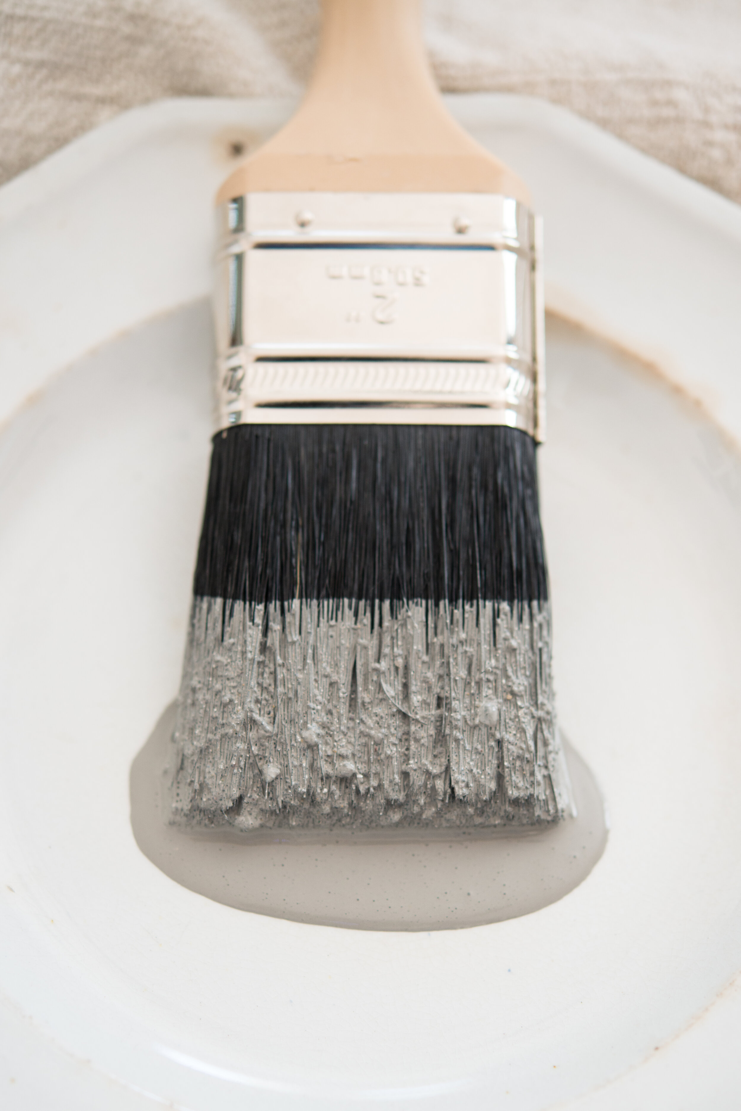 Miss Mustard Seed's Milk Paint in the color Trophy on a brush