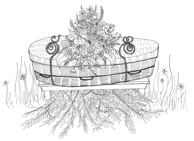 Illustration of wicker casket and vegetation for green burial