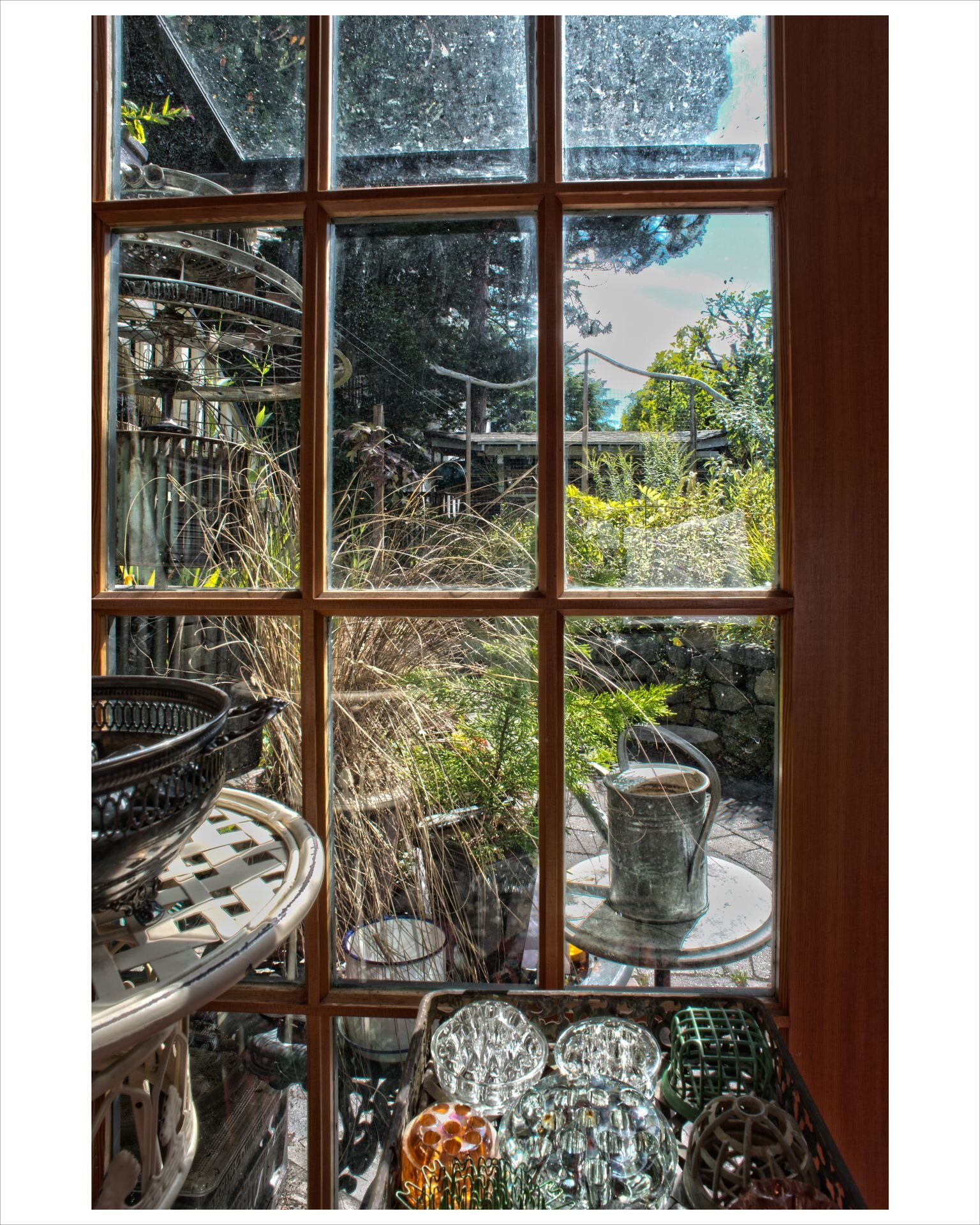 SD Holman's  Window , looking out on Geoff McMurchy's beloved garden near the Drive.