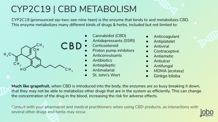 Plants are powerful! Always consult with your medical professionals before taking any CBD products as drug-drug interactions are possible .     2  ,   5,     6    , 7   ,    8  ,