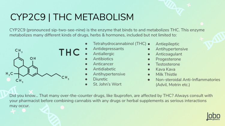 Plants are powerful! Always consult with your medical professionals before taking any THC products as interactions are possible with over the counter drugs and natural supplements.        2    ,     6    ,     9.