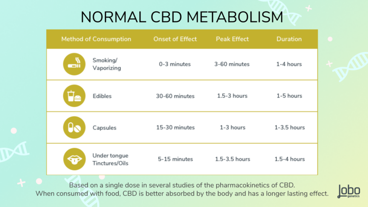 Lobo Genetics CBD Metabolism report    shows the a comparison of methods of consumption for a Normal CYP2C19 *1/*1 result.