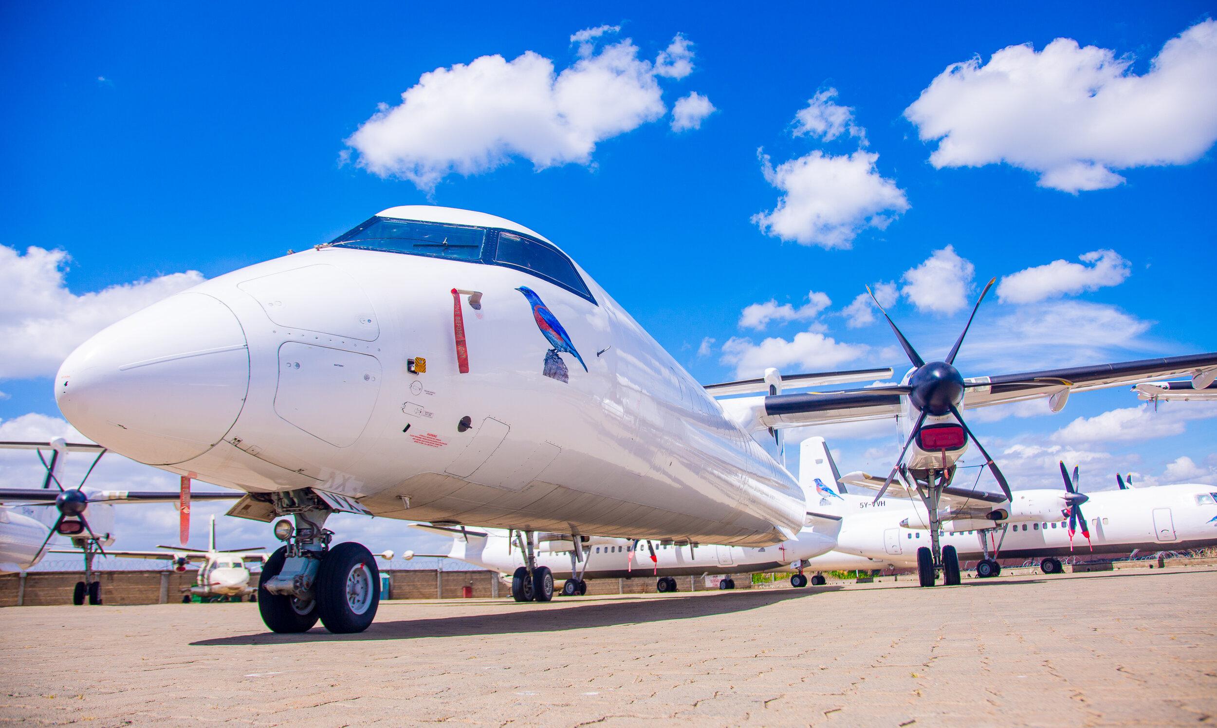 Bluebird Aviation case