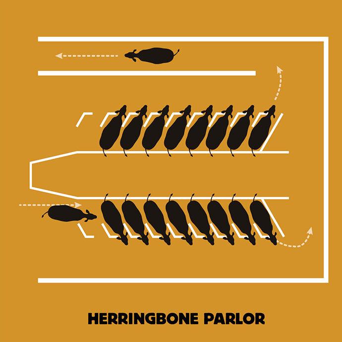 herringbone_parlor.jpg.