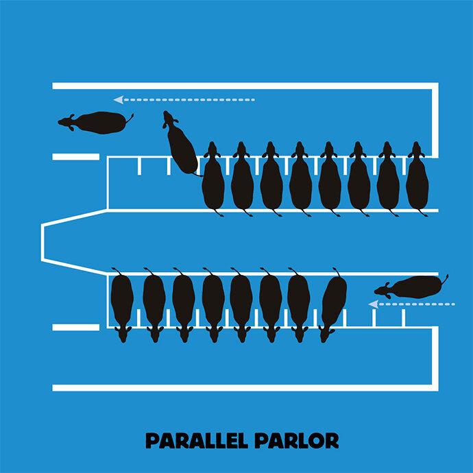 parallel_parlor.jpg.