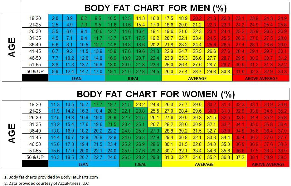 body fat measurements chart