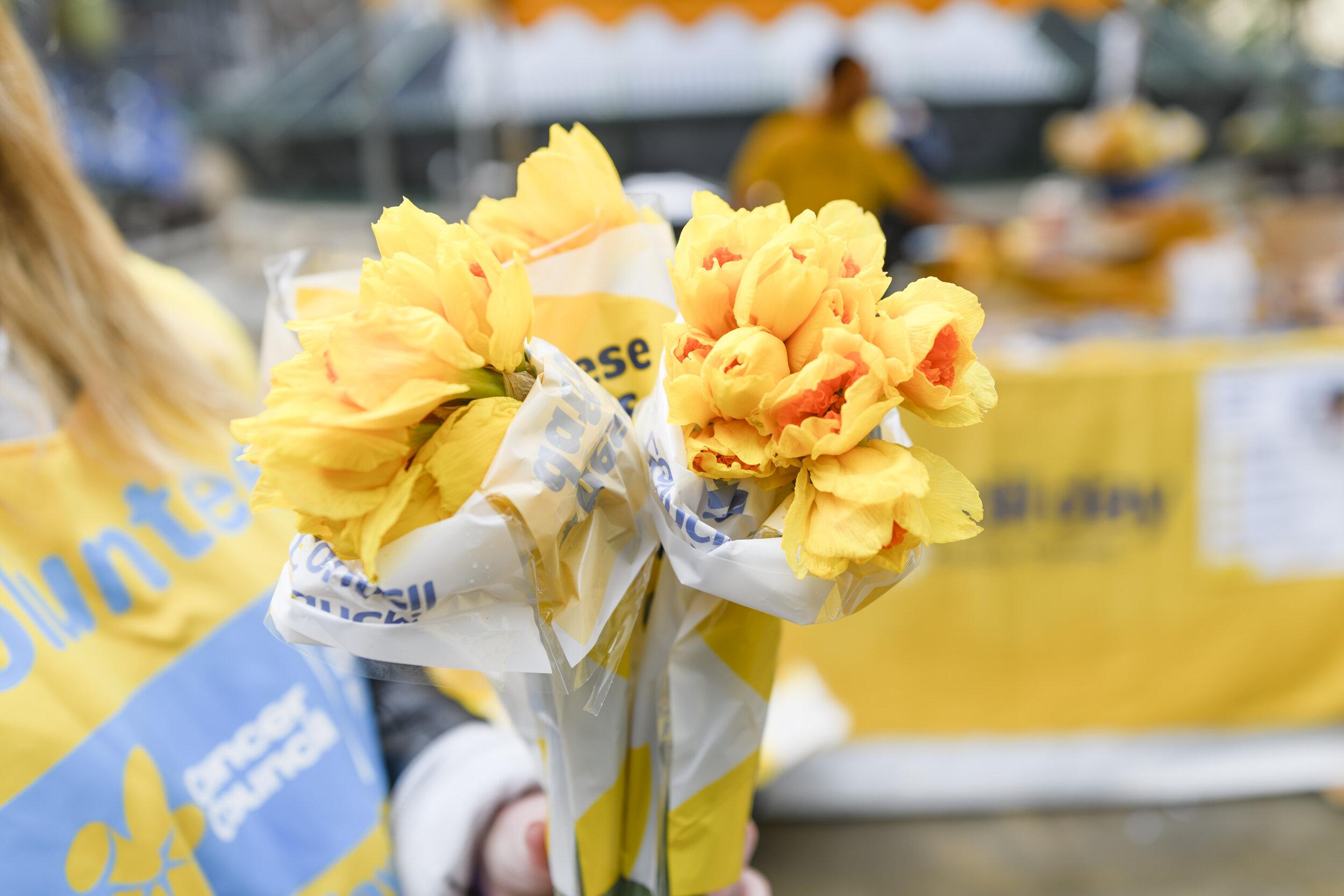 73178-CCNSW_Daffodil_Day_2018-2330.jpg