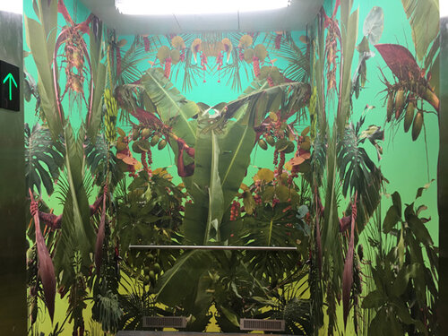 """""""All Tomorrow's Parties"""" by Fallen Fruit (David Burns and Austin Young), at The Bunker, West Palm Beach, Beth Rudin DeWoody's private art space."""