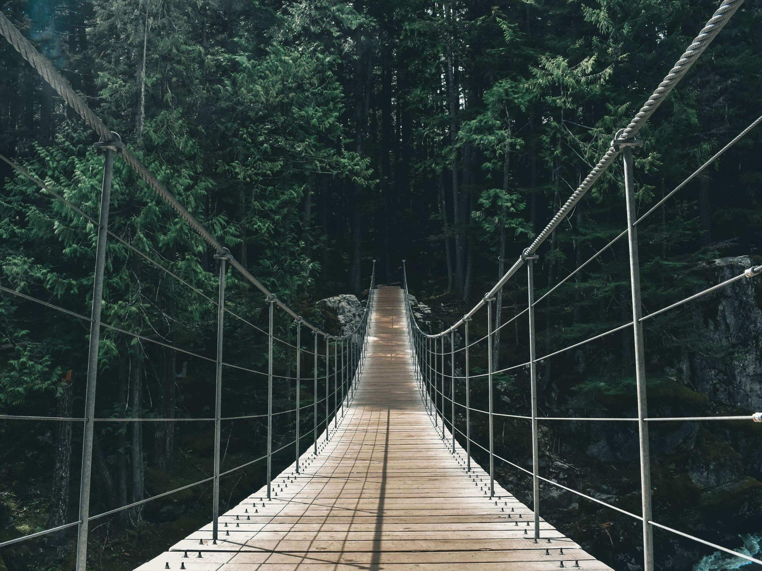 Path to Vegan Lifestyle