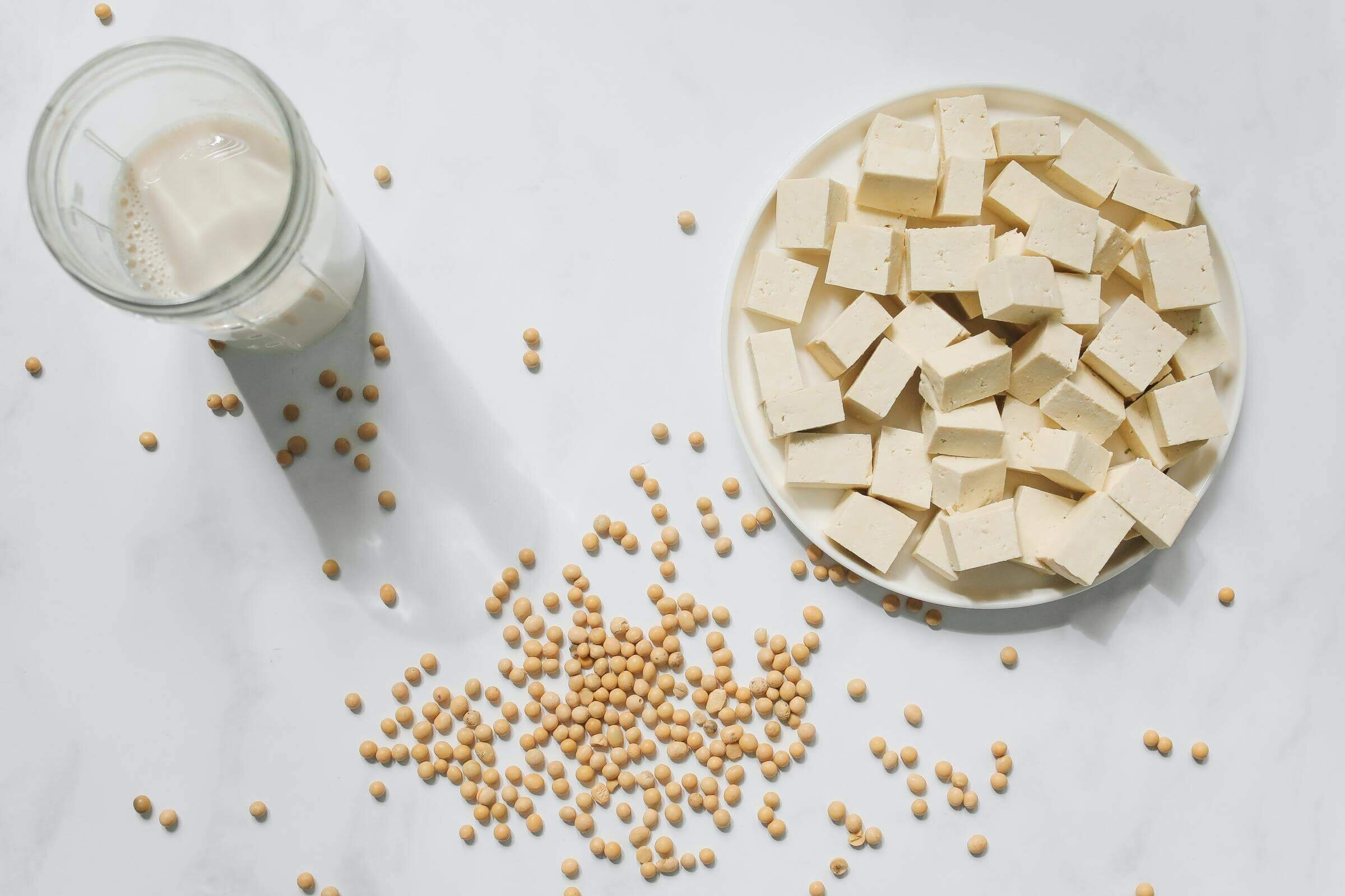 Soy Beans, Tofu, Tempeh and Soy Milk