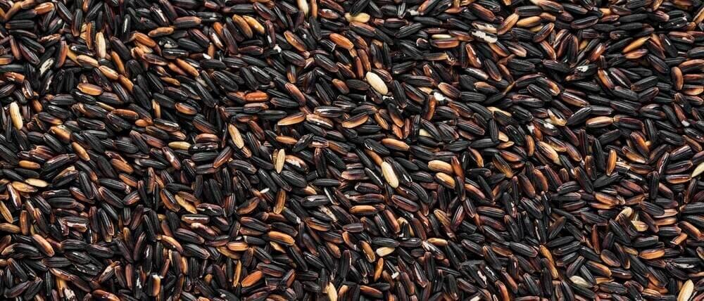 Organic Forbidden Black Rice
