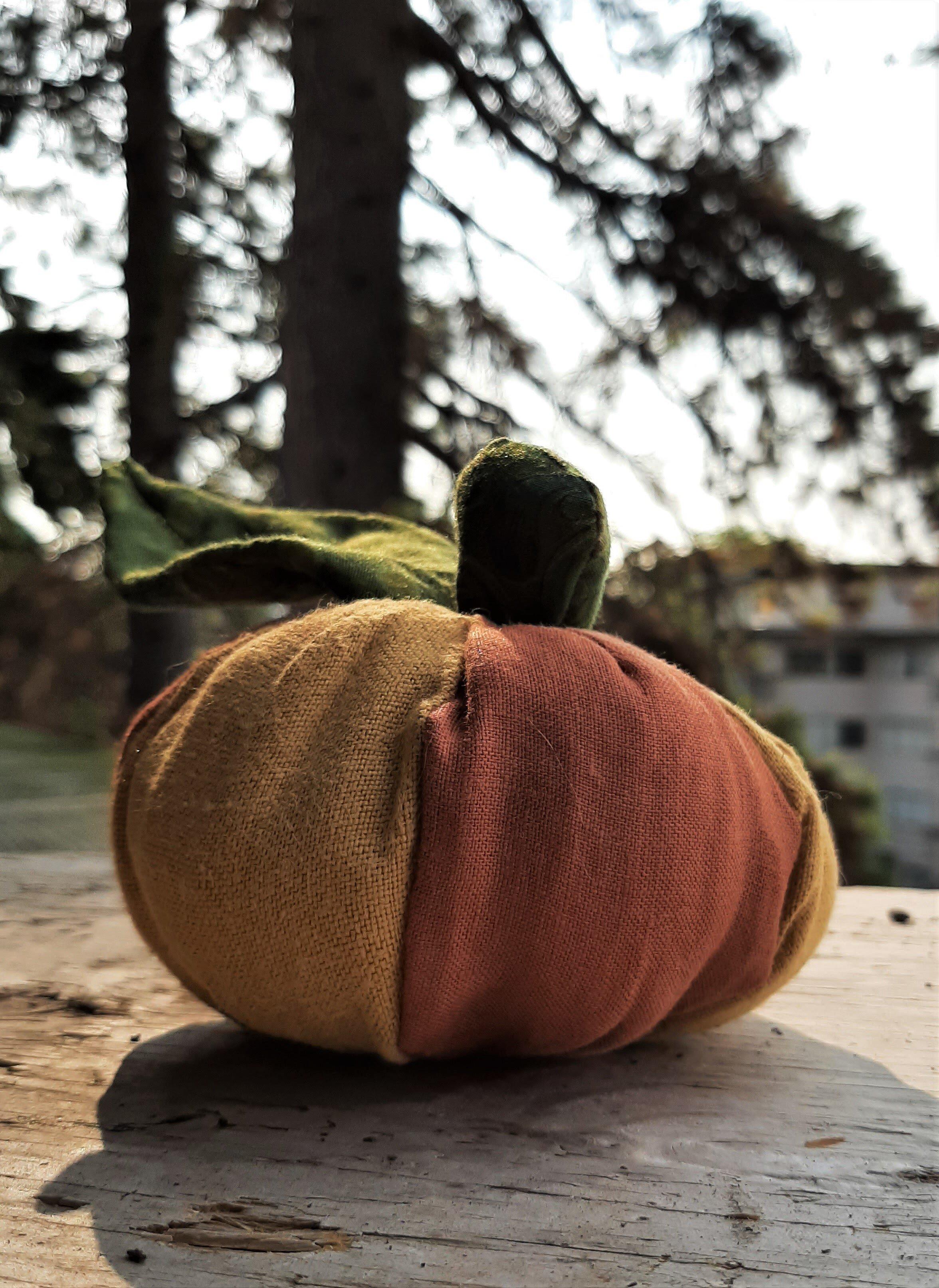 Babies first pumpkin