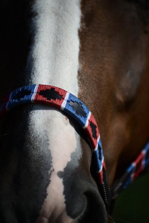 plano detalle de la nartiz de un caballo que lleva la cabezada de cuadra estilo polo de double diamond en azul y rojo
