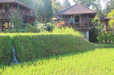 villa-sawah.jpg