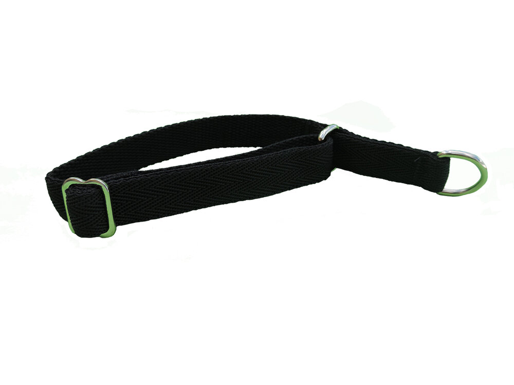 Slip Collar - Medium — Dogs Day Outside   Quality Accessories for your Best  Friend