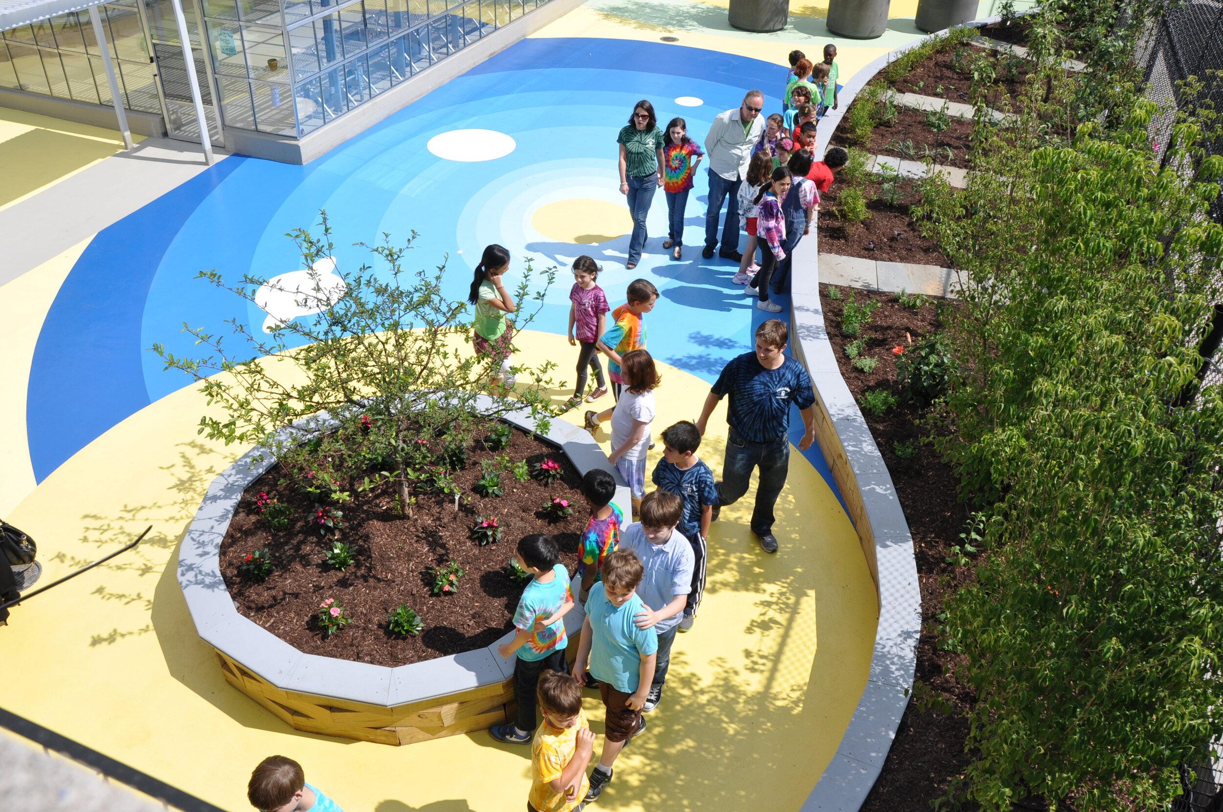 曼哈顿PS 6生态中心的强化绿色屋顶作为一个户外教室,为学生提供了众多动手的学习机会,并作为所有学校的型号,如何优化不同屋顶上的富有成效和教育计划。2014 GRHC卓越奖获奖项目:MKM景观建筑P.C.