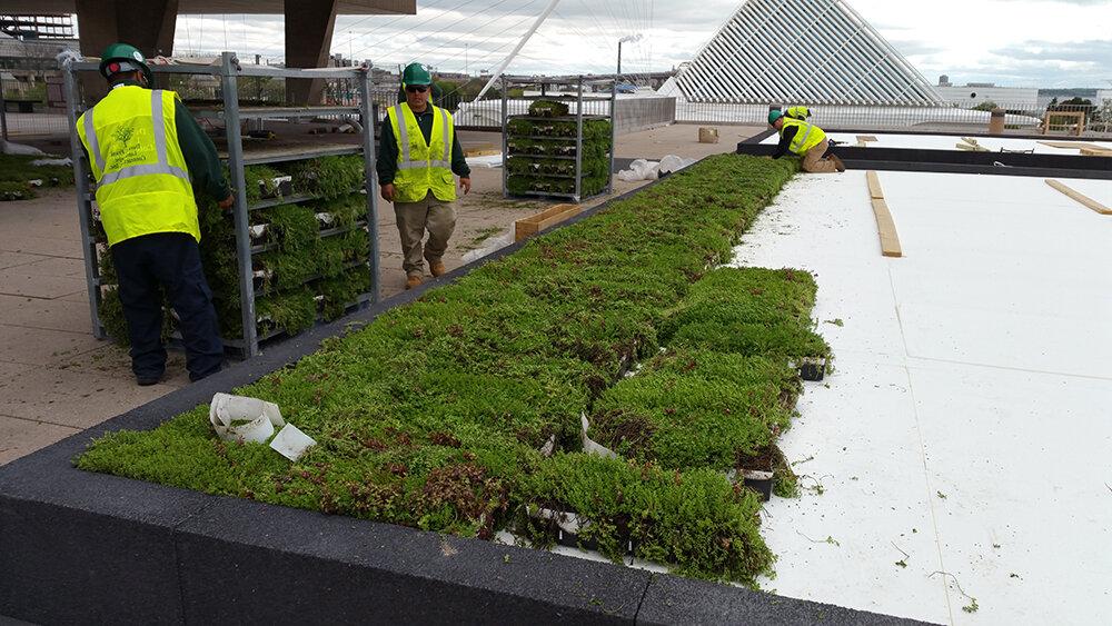 绿色屋顶在21世纪的绿色工业中提供有意义,生活工资工作,同时支持当地供应商和制造商。资料来源:Liveroof.