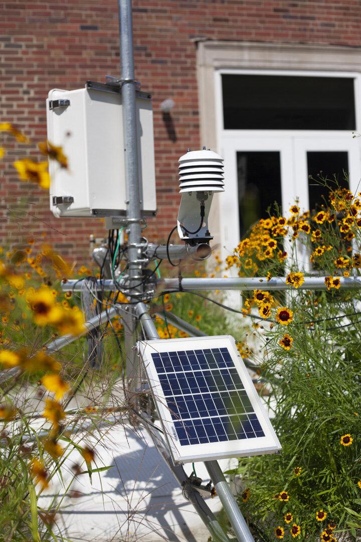 绿色屋顶气象站,2020年9月。(图片:Maddy Salyer,新闻摄影专业学生)beplay体育欧洲杯买球官网