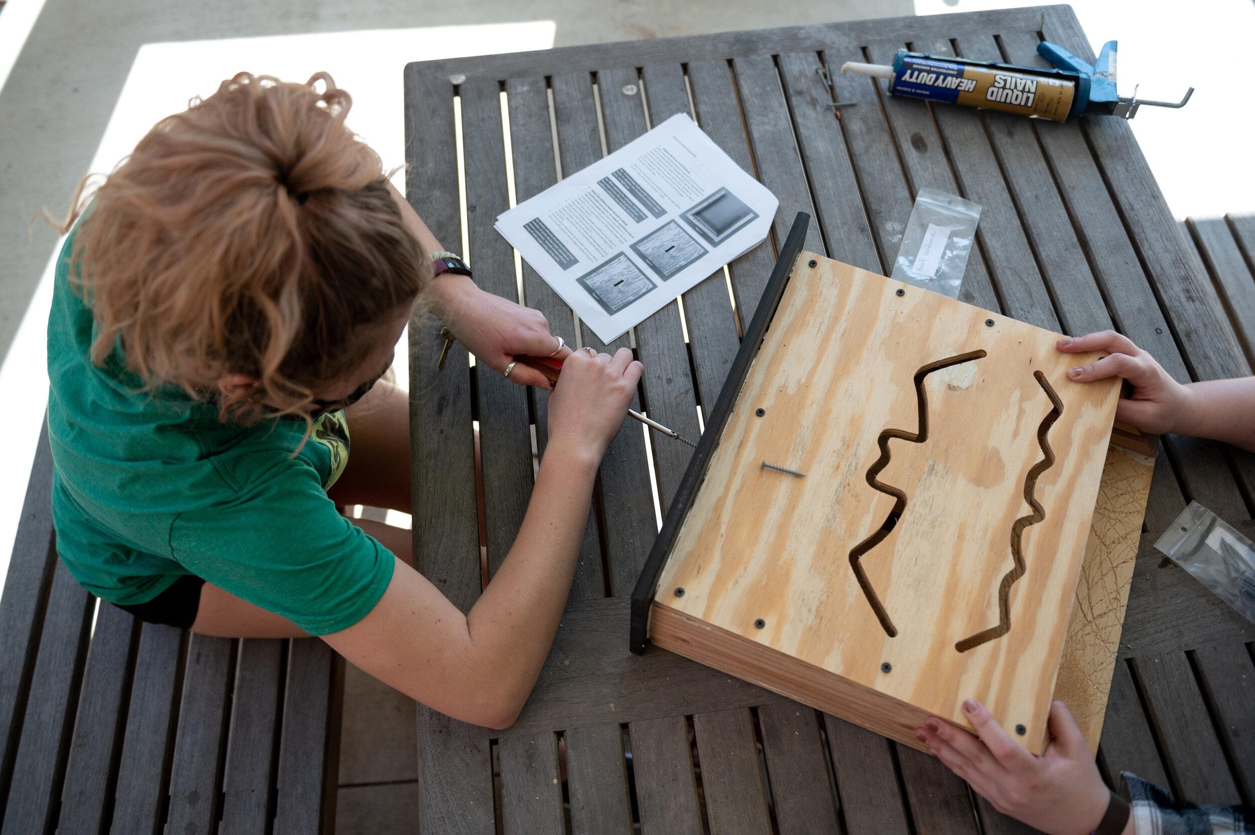 学生们将在绿色屋顶上建造一个蝙蝠屋。(图片:斯蒂尔·布鲁克斯,新闻摄影硕士)beplay体育欧洲杯买球官网