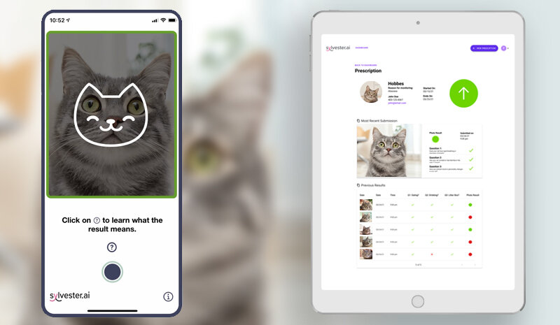 Tably for Veterinarians — Sylvester.ai
